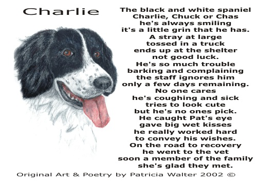 Charlie Poetry & Art by Patricia Walter