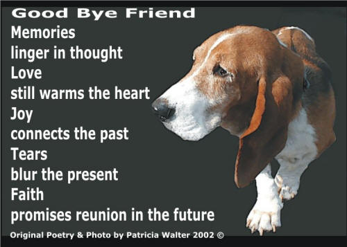 Good Bye Friend Poetry & Art by Patricia Walter
