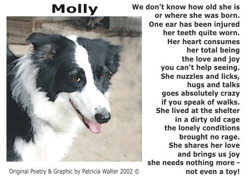 Molly Poetry & Art by Patricia Walter