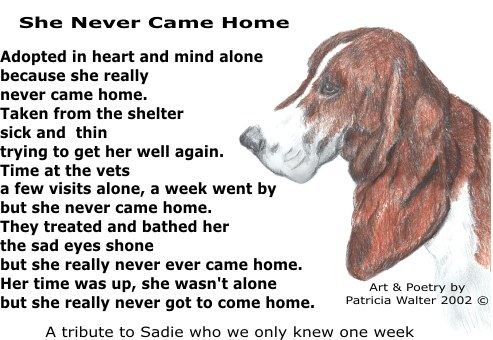 She Never Came Home Poetry and Art by Patricia Walter
