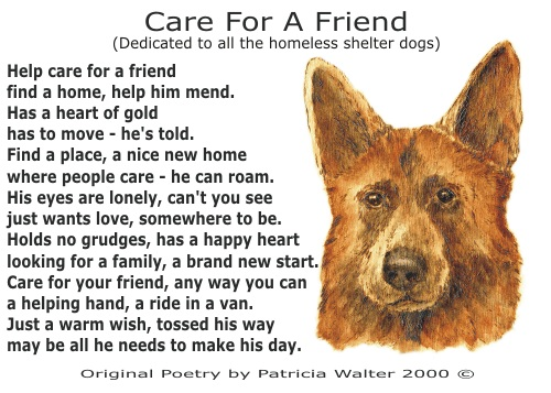 Care For A Friend Poetry & Art by Patricia Walter