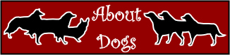 About Dogs featuring many dog stories by Patricia Walter